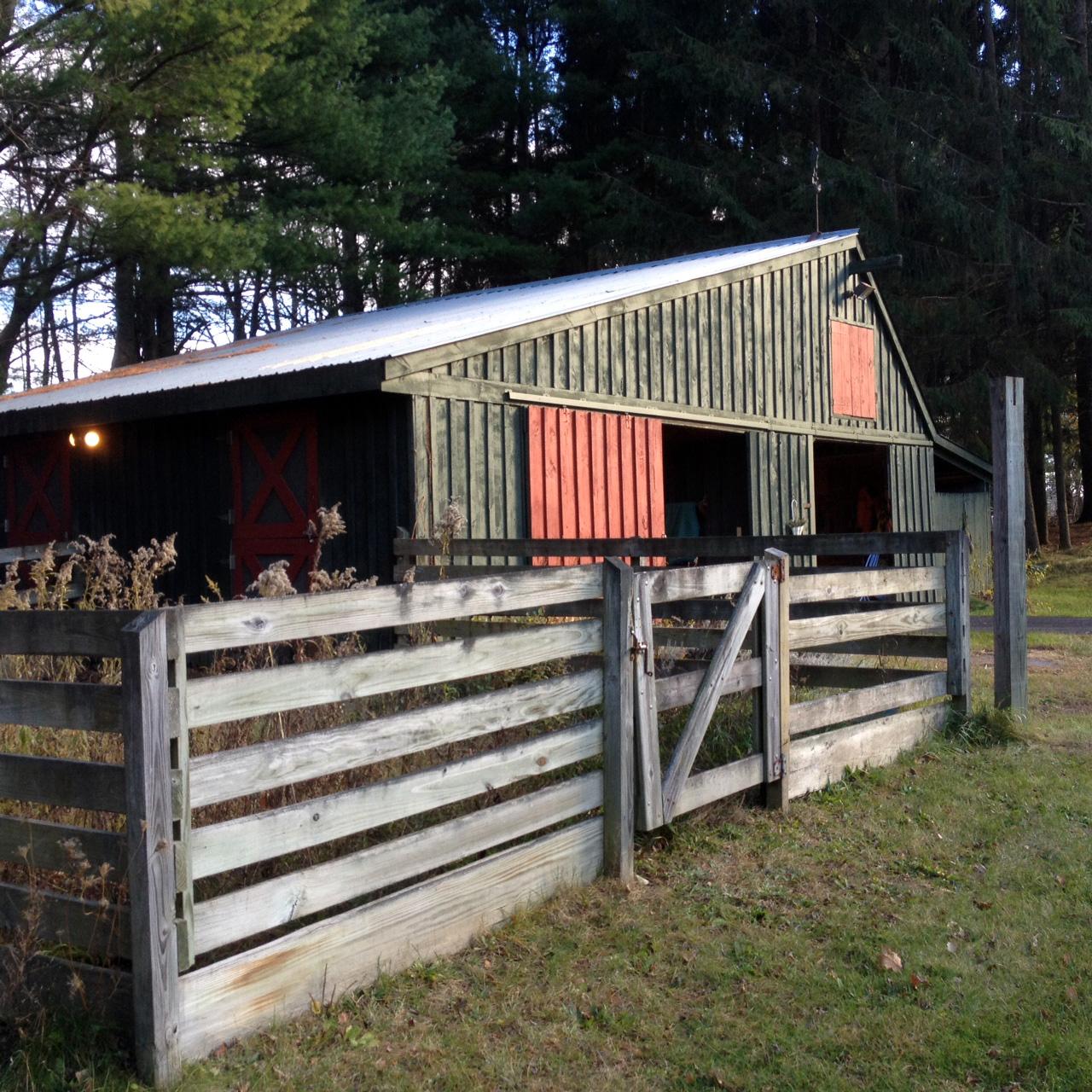 DZ Farm