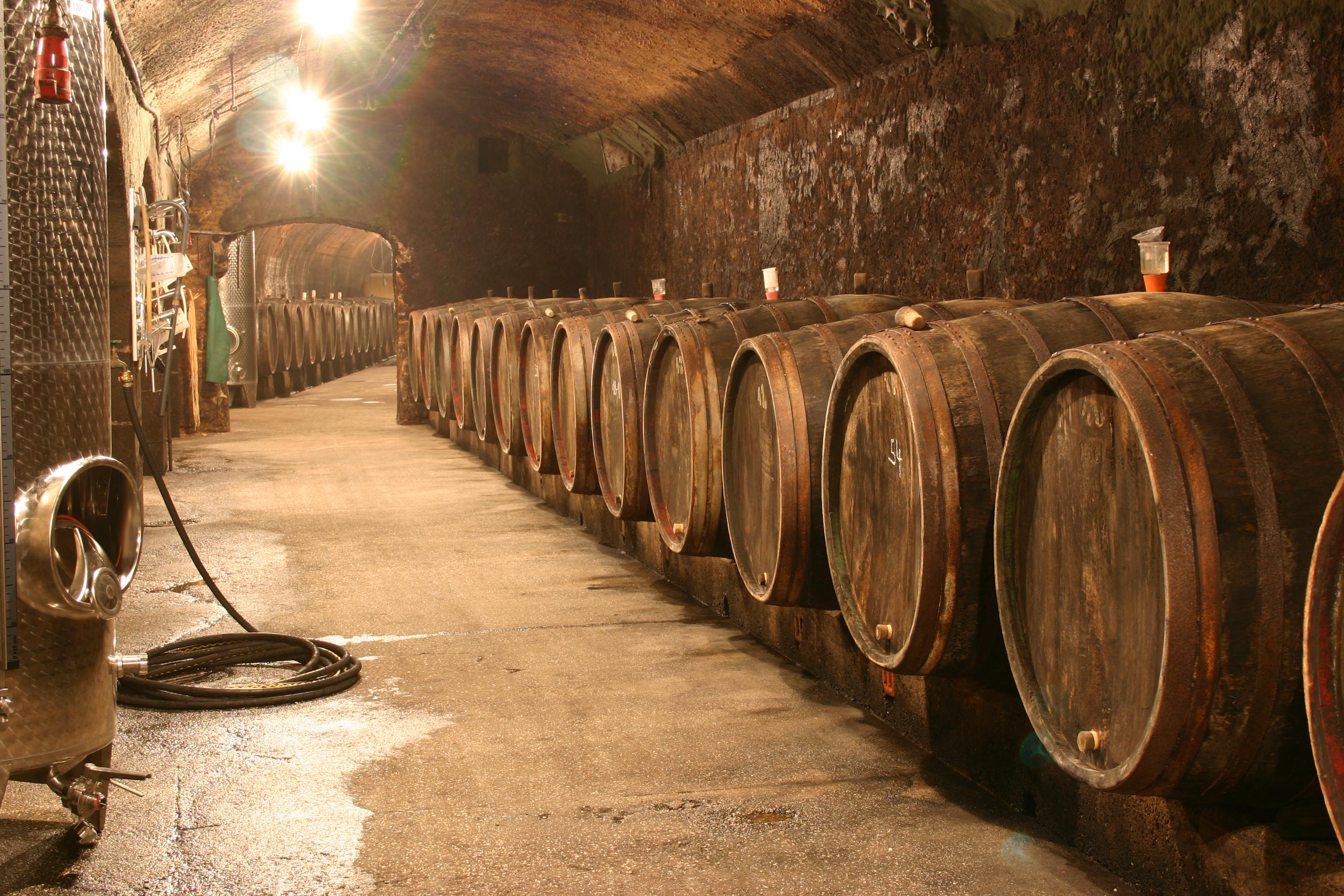002_Alter_Fasskeller___Old_cask_cellar